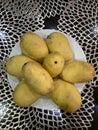 Photo of Philippine mango fruit on a plate