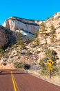 Photo road going zion national park utah usa Stock Photography