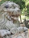 Eternal lion in stone