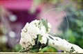 Photo of white wedding bouquet vintage Royalty Free Stock Image