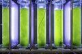 Photobioreactor in lab algae fuel biofuel industry. Royalty Free Stock Photo