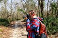 Photographer in the forest photographing the natural environment Royalty Free Stock Photo