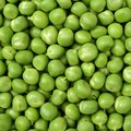 Photography of pea grains Royalty Free Stock Photo