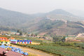 Phu resorts cabbage serene mountain views from above and plants Stock Image