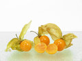 Physalis fine on glass plate background Stock Image