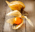 Physalis fruit over wooden background Stock Photos