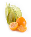 Physalis fruits Royalty Free Stock Photo