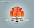 Physical concept orange paper tree from the mathematical equations and formulas growing from an open book illustration modern Royalty Free Stock Images