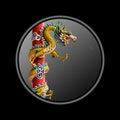 Pièces de monnaie de dragon Photo stock
