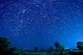 Piękna gwiazda Zdjęcia Royalty Free
