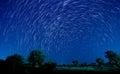 Piękna gwiazda Obraz Stock