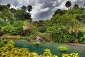 piękny chmur zmroku krajobraz tropikalny Obraz Stock