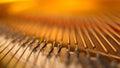 Piano bridge and strings closeup. Royalty Free Stock Photo