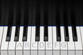 Piano keyboard octave with labels section of showing one plus two extra keys on each end keys labeled as for a student and key Royalty Free Stock Image