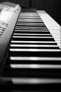 Piano keys close up black and white of the Royalty Free Stock Image