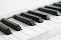 Piano keys close-up. Piano playing. Black and white keys. Electronic piano Royalty Free Stock Photo