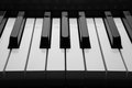 Piano keys macro black and white of the closeup Stock Photos