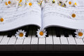 Piano keys and musical book and flower black white of the closeup Royalty Free Stock Photos