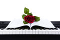 Piano keys and rose flower on note book white Stock Photography