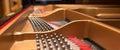 Piano tuning pins. Royalty Free Stock Photo