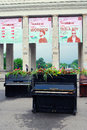 Pianos decorated by flowers the entrance to the gorky park it s decoration on the occasion of international chereshnevy les Royalty Free Stock Images