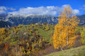 Piatra craiului mountains scenic view of with autumn forest in foreground southern carpathians romania Stock Images