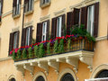 Piazza Navona Windows Royalty Free Stock Image
