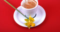 Pic of spring morning cofee with yellow flower Royalty Free Stock Photos