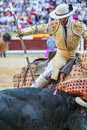 Picador bullfighter lancer whose job it is to weaken bull s nec jaen spain october neck muscles in the bullring for jaen spain Stock Image