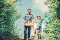Pick out flats favorite plants. Garden works. Spring garden. Spring gardening checklist. Father and daughter with shovel Royalty Free Stock Photo