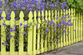 Picket Fence Royalty Free Stock Photo