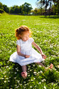 Picking flowers adorable three year old girl and having fun on meadow Stock Photos