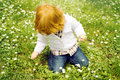 Picking flowers Royalty Free Stock Photo