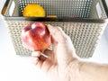 Picking fresh fruits Royalty Free Stock Photo