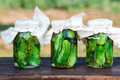 Pickled cucumbers made with home garden vegetables and herbs Stock Photography