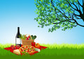 Picknick on summer field Royalty Free Stock Photography