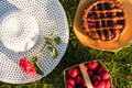 Picnic in the backyard on a sunny day Royalty Free Stock Photo