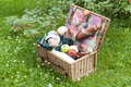 Picnic basket Stock Images