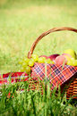 Picnic basket Royalty Free Stock Photos