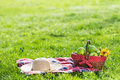 Picnic basket and blanket Royalty Free Stock Photo
