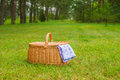 Picnic basket with blue white napkin in park Royalty Free Stock Photo