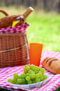 Picnic basket with bottle of wine and food in the woods Royalty Free Stock Photography