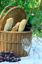 Picnic basket and food in forest Royalty Free Stock Photography
