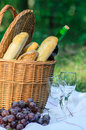 Picnic basket and food in forest Stock Photography