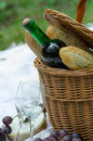 Picnic basket and food in forest Stock Image
