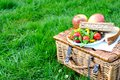 Picnic basket with food on the grass Royalty Free Stock Image