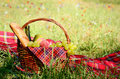 Picnic basket fool fruits bread wine floral meadow background Royalty Free Stock Photos