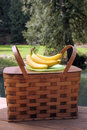 Picnic basket and fruit outdoors