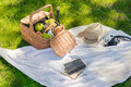 Picnic basket with fruits, cheese and wine bottle, hat, vintage camera and notebook with pencil Royalty Free Stock Photo