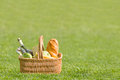 Picnic basket green lawn Stock Image